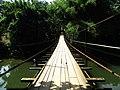 Hanging wood bridge.jpg