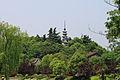 Hangzhou Zhakou Bai Ta 20120518-19.jpg