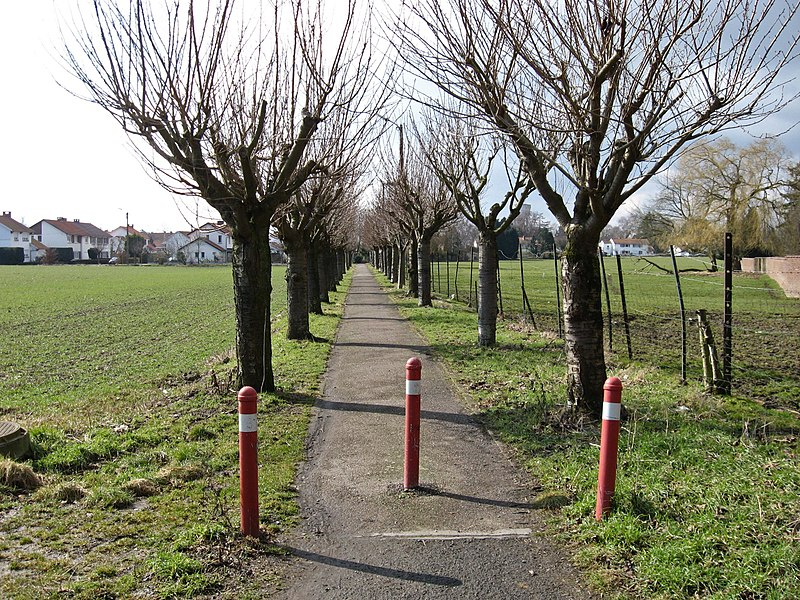 This walking path was part of the vicinal railway Hannut - Meeffe