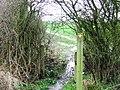 Harcamlow Way at Takeley - geograph.org.uk - 734609.jpg