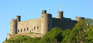 Harlech Castle, Wales, view from below the cas...