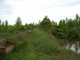 HarringtonBeachStateParkTrail.jpg