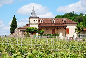 Cahors wine - Typical building and winery of the Cahors region (Château Haut-Monplaisir)