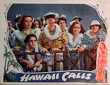 Hawaii vokoj prilaboras card.jpg