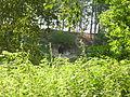 Helme koopa suu Helme jõelt vaadatuna IMGP0046.JPG