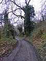 Hickmerelands Lane Scene - geograph.org.uk - 1075606.jpg
