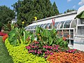 Hillwood Gardens in July (14608865539).jpg