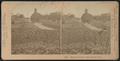 Hoey's Grounds, Long Branch, N.J, from Robert N. Dennis collection of stereoscopic views 4.png