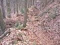 Hohlweg im Pfälzer-Wald.jpg