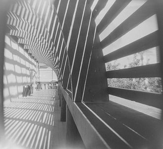 Holga - A developed image from a Holga 120N with black and white film.