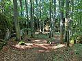 Hollederberg 2 - panoramio.jpg