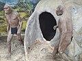 Homo sapiens2020.jpg