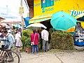 Huancayo Peru- livestock feed seller.jpg