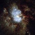 IC 342 - HST - Potw1727a.tif