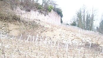 IMG Vignoble de Mercurey 14.JPG