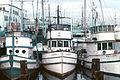 Idle Fishing Boats.jpg