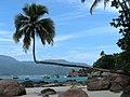Ilha Grande - panoramio (33).jpg