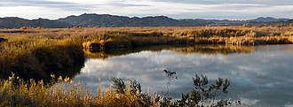 Imperial National Wildlife Refuge - Image: Imperial national wildlife refuge