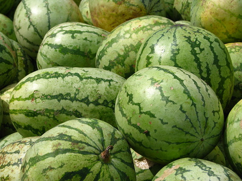 File:India - Koyambedu Market - Watermelons 07 (3987063506).jpg