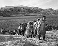 Inuites transportant un qamutik - Pangnirtung 1946.jpg