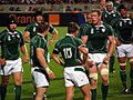 Ireland vs Georgia, Rugby World Cup 2007 What's the Plan Boss.jpg