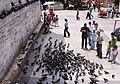 Istanbul, İstanbul, Turkey - panoramio - HALUK COMERTEL (18).jpg