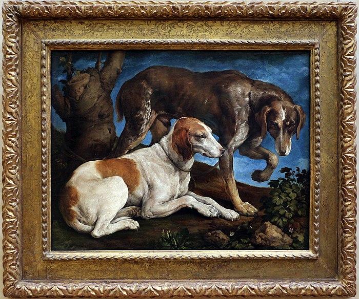 Jacopo bassano, due cani da caccia presso un ceppo, 1548