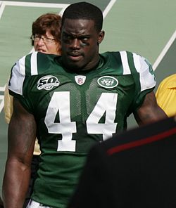 James-Ihedigbo Jets-vs-Jaguars Nov-15-09.jpg