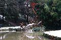 Jardin Compans Caffarelli sous la neige (8398914925).jpg
