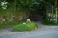 Jay's Grave, Dartmoor.jpg