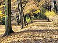 Jesiennie... - panoramio (2).jpg