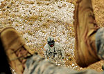 Joint combat and rescue training exercise 140128-F-MO006-036.jpg