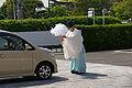 Jonangu Kyoto53n4272.jpg