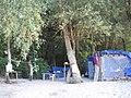 KAMP - panoramio.jpg