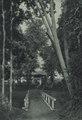 KITLV - 88309 - Kleingrothe, C.J. - Medan - Administrator's residence at company Bulu Tjina (Boeloe Tjina) of the Deli Company in Deli - 1905.tif