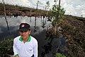 Kalimantan deforestation and degradation 13 (10706270746).jpg