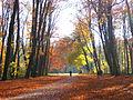 Koeln Lindenthal Park.jpg