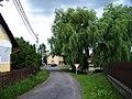 Konětopy (Milín), cesta ze Slivice, vrby u rybníka.jpg