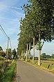 Koolkerke Ronselarestraat R03.jpg