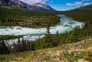 Torngat Mountain tundra