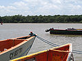 Kourou river port boats seagull jungle.jpg