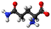 Ball-and-stick model of the L-isomer as a zwitterion