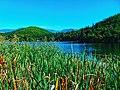 Lago di Monticolo - Photo by Giovanni Ussi - Lago Grande 92.jpg