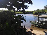 Lagoa,ilha e vegetação da Barra de Jequiá.jpg