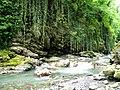Lagodekhi Green (Photo by Peretz Partensky, 2009) (3).jpg