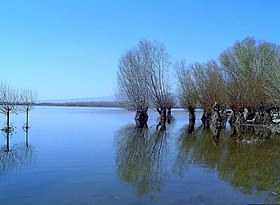Lake Isikli Civril DenizliProvince Turkey.jpg