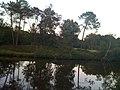 Lake at Moulin de Cheni - panoramio.jpg