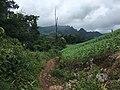 Landscape in Pang Mapha District 12.jpg