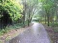 Laneway, Omagh - geograph.org.uk - 252274.jpg