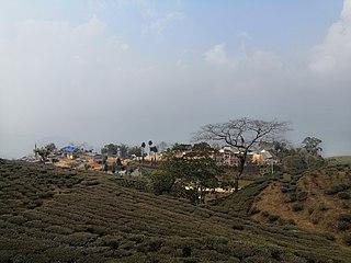 Lakshmipur, Ilam Village Development Committee in Mechi Zone, Nepal